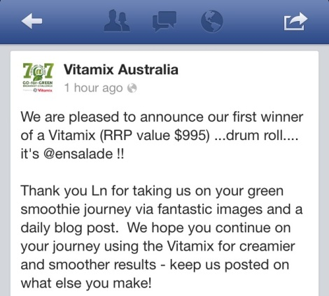 Vitamix Challenge
