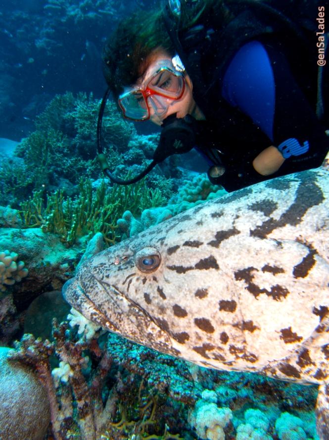 Santé produit mer alimentation