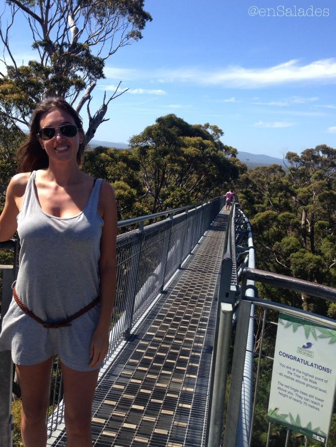 tree top walk western australia