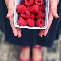 Interview: Meet food photographer Sandrine from Little Berries & Co.